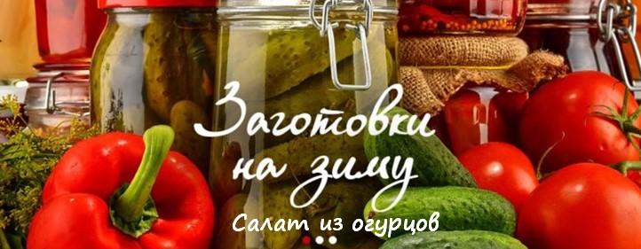 Салат из огурцов и яиц – 17 пошаговых рецептов с фото
