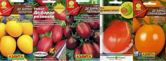 Какие помидоры садить на урале