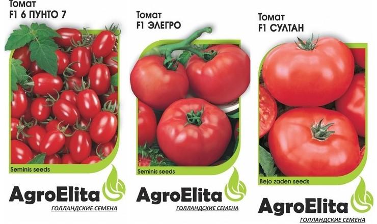 Семена низкорослых помидоров для открытого грунта