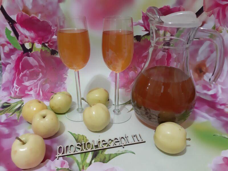 Домашнее вино из сока яблок
